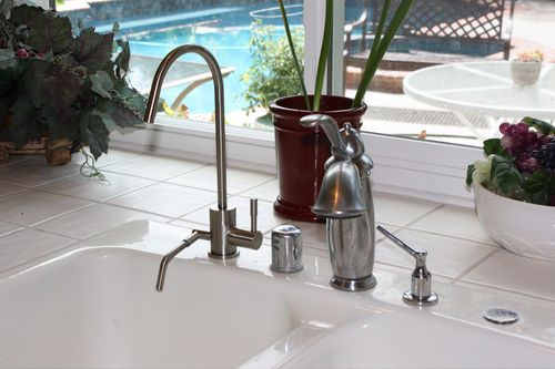 ION Dual Faucet